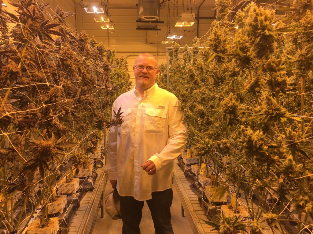pepper-petersen-Montana-legalization